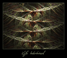 Life Intertwined by ClaireJones