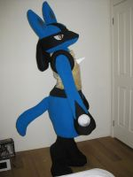 Lucario Lookin by scatnix