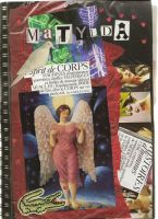 My Visual Diary by matyl