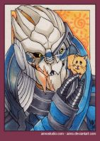 PSC - Garrus and Boo by aimo