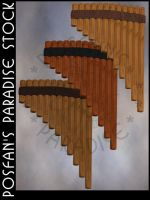 PanPipes 003 by poserfan-stock