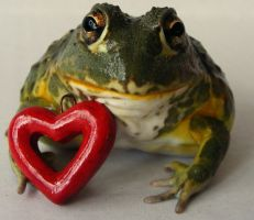 A Frog's Love by PaganFireSnake