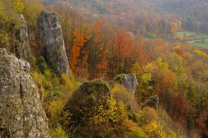 autumn in franconia by mescamesh