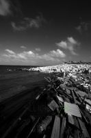 the point, galveston by ShannonReiswig