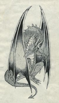 Old pen and pencil - Dragon drawing by JRR74