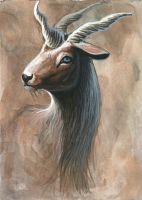 unideer by hibbary