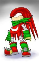 Knuckles the echidna by fahrenheight