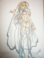 The Fighting Bride.. by HPCIllustrations