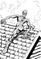 Spiderman ink sketch by The-Standard