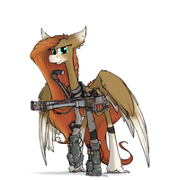 The Air Support by Sinrar