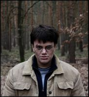 Harry Potter ID by Lari--Chan
