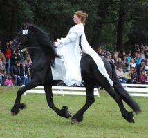 Ladies On Friesians 09 by ponystock