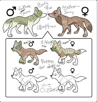 Adoptables! by GalaxyCrowButt