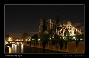 Notre Dame by Night by Andrew-and-Seven
