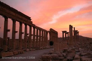 Palmyra sunset by westindies972