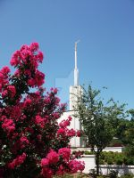 LDS Georgia Temple by john33