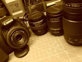 My Lenses at the moment. by lobofeo