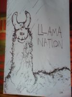 LLAMA NATION by Guishama