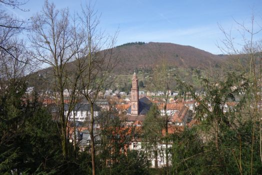 another panoramic view to Heidelberg by DansPhotos