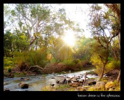 taroom stream in the afternoon by dannishez