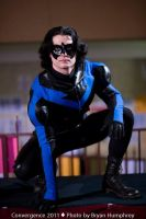 Nightwing by hallz89