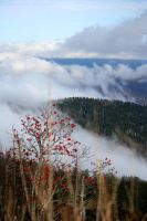 clouds over the ridge p2 by Uzumate