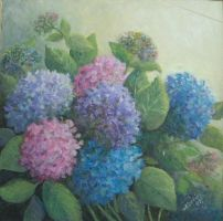 my hydrangeas by Hydrangeas