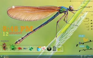 Insects desktop by fredlicurgo