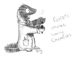 Ferrets Make Lousy Chemists by spikysshadow