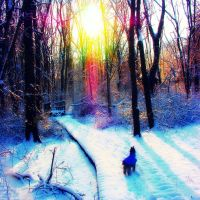 A Rainbow Winter's Day by HSCswimmer