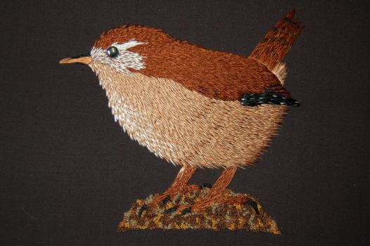 Wren by RuthNorbury