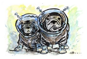 AstroDogs by Andrew-Ross-MacLean