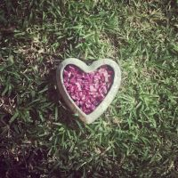Spread your heart on the grass by babemz