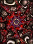 Starfish Red Coral by ivankorsario
