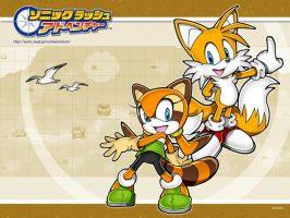 Tails and Marine Wallpaper by Prowermaster