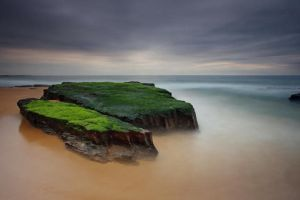Turimetta Greens by timbodon