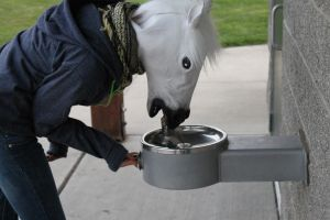 Horse Thirst by Team-Horse