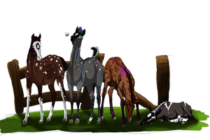 Commission of foals by Aithair