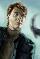 It All Ends - Fred or George by SkarValidus
