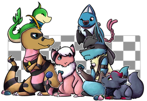 Pokemon Black2 Team by Star-Swirls