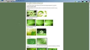 LINUXMINT-WEB-1 by Linux4SA