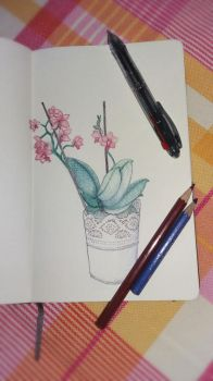 Orchid sketch by EmagineNationS