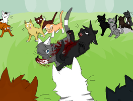 This is War - Warrior Cat OCs by magic-s74
