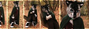 Frodo Fursuit by WindWo1f