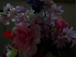 flowers by group-stock
