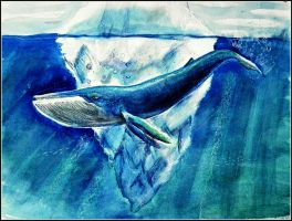 Blue Whale by philippeL
