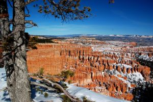 Bryce Canyon III by esee