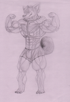 Muscle Husky by Blood-wolf94