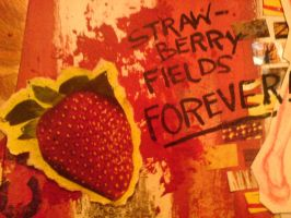 STRAWBERRY FIELDS FOREVER by emiliaa