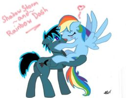 Shadow Storm and Rainbow Dash by ArgeonTheBrony